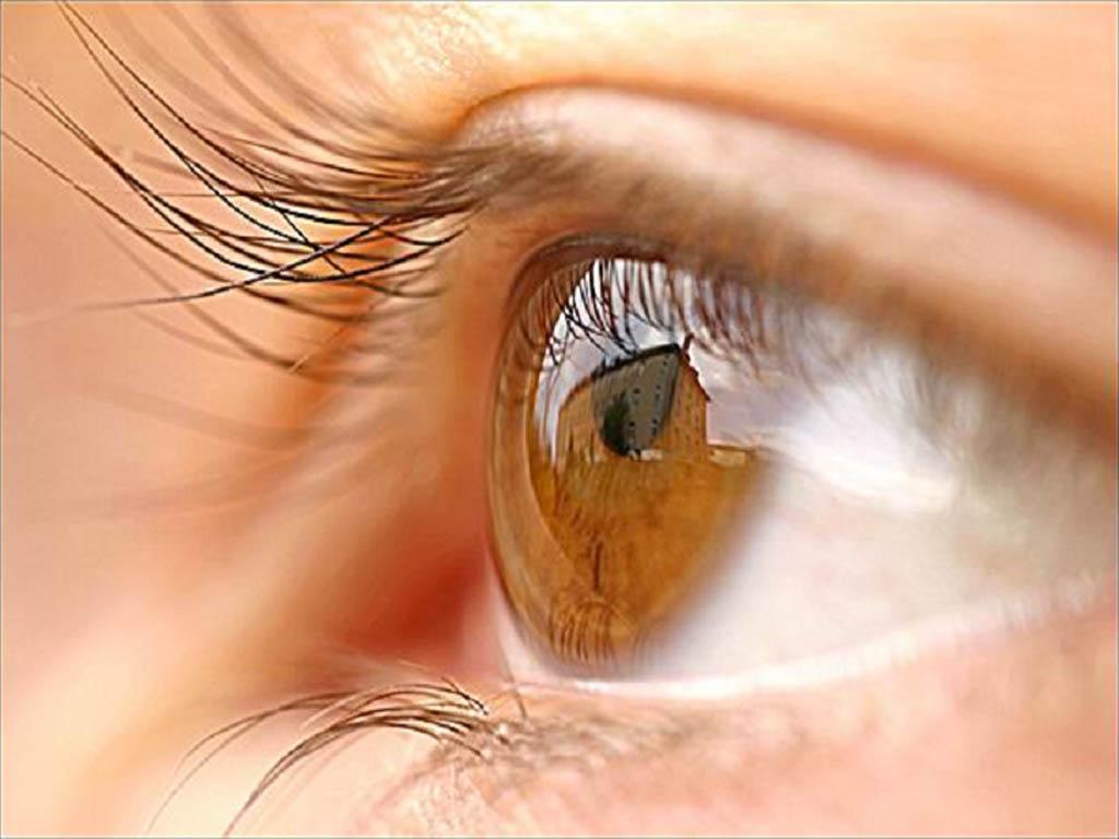 глаза, диагностика по глазам