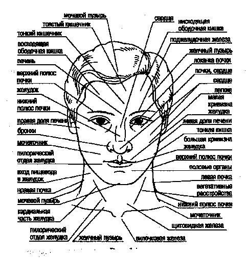лицо диагностика