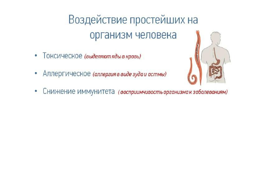 НРамиля  09.09.2014_cr_8