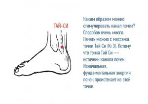 Презентация почки 2 курс 28 (2).10.2014_cr (1_29