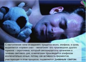 гормоны сна