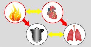 огонь-сердце
