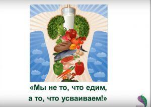 коррекция пищеварения в праздничные дни