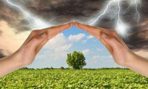 Как пережить капризы природы