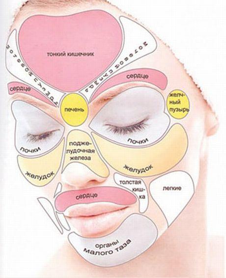 взаимосвязь состояния здоровья кожи и внутренних органов