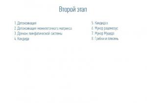 Презентация грибки_нередактируемая_33_31