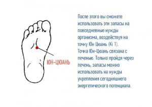 Презентация почки 2 курс 28 (2).10.2014_cr (1_30
